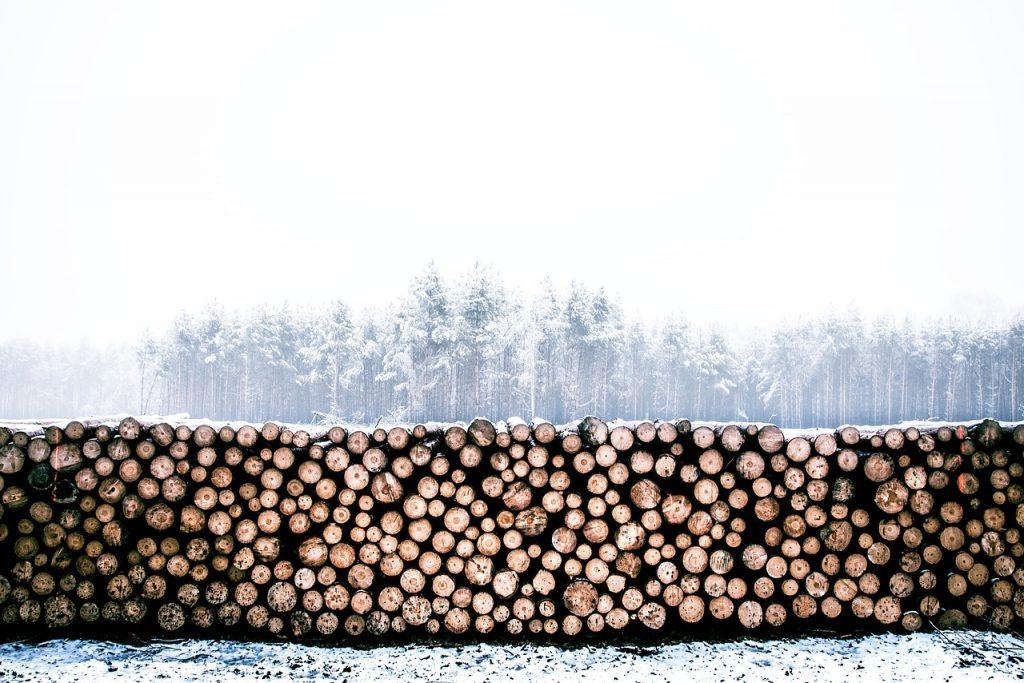 miernik wilgotności drewna