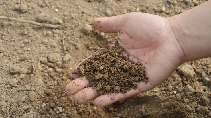 miernik wilgotności gleby